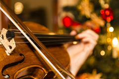 有圣诞树的小提琴 库存照片