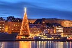 有圣诞树的Stockholms老市 免版税图库摄影
