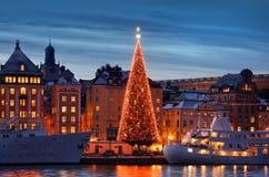 有圣诞树的Stockholms老市 库存照片