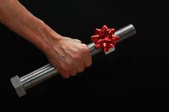 有圣诞节弓的大螺栓 库存图片