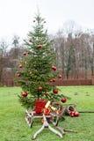 有圣诞节的爬犁在一棵装饰的圣诞树前打包的老木制框架 免版税库存图片