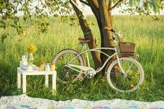 有在夏日设置的野餐的自行车 免版税库存图片