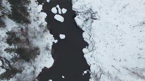 有在山脉的一次美好的冬天空中飞行 风景是惊人的 雪的一个森林在 股票视频