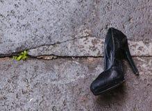 有在沥青的被放弃的泵浦鞋子 免版税库存图片