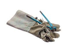 有在白色背景隔绝的皮革工作手套的老板钳, 库存图片