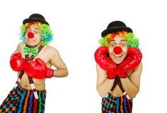 有在白色隔绝的拳击手套的小丑 库存图片