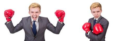 有在白色隔绝的拳击手套的年轻雇员 库存照片
