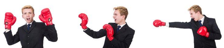 有在白色隔绝的拳击手套的年轻雇员 图库摄影