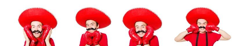 有在白色隔绝的拳击手手套的滑稽的墨西哥人 库存照片
