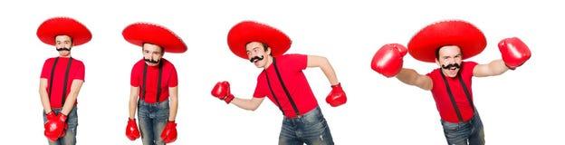 有在白色隔绝的拳击手手套的滑稽的墨西哥人 图库摄影