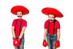 有在白色隔绝的拳击手手套的滑稽的墨西哥人 库存图片