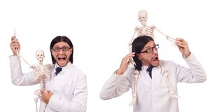 有在白色隔绝的骨骼的滑稽的老师 库存照片
