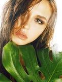 有在白色c隔绝的绿色叶子的年轻深色的端庄的妇女 库存照片