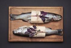 有在纸包裹的两条新鲜的鳟鱼鱼的木板 库存图片