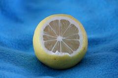 有在蓝色背景的一个柠檬在照片 图库摄影