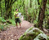 有地图的远足者在森林里 库存图片
