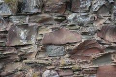 有地衣的古老石墙 库存照片