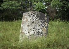 有地衣的未玷污的墓碑 库存照片