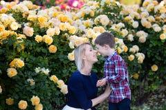 有坐在黄色玫瑰丛,拥抱和笑附近的一点儿子的一个年轻母亲 库存图片