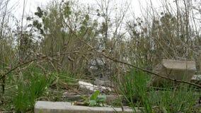 有垃圾和老建筑材料的被放弃的土地 股票录像