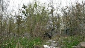 有垃圾和老建筑材料的被放弃的土地 影视素材
