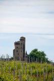 有城堡的葡萄园 免版税图库摄影
