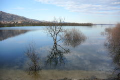 有城市的湖 免版税库存照片