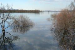 有城市的湖 库存图片