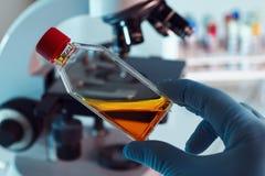 有培养瓶的科学家 免版税图库摄影