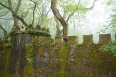 有塔的生苔墙壁在一个有雾的森林里 免版税库存照片