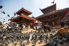 有塔的老Durbar广场, 2013年11月28日在加德满都,尼泊尔 免版税库存照片