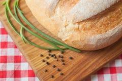 有壳的在顶端大面包视图在木桌上用胡椒和葱 图库摄影