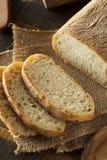 有壳的自创Ciabatta面包 免版税库存照片