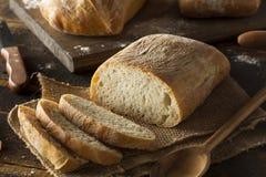 有壳的自创Ciabatta面包 免版税图库摄影
