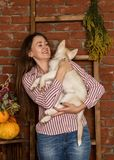 有多壳的小狗的愉快的美丽的妇女与在砖墙背景的秋天收获 图库摄影