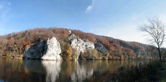 有多瑙河的Autum森林 免版税图库摄影