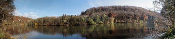 有多瑙河的Autum森林 免版税库存图片
