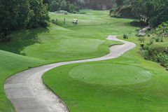 有多虫的车道的高尔夫球场 免版税库存照片