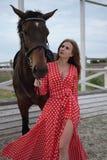 有大乳房的美丽和性感的金发碧眼的女人在一件红色礼服和棕色衣服马  免版税库存照片