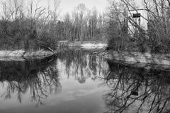 有大厦和树的池塘 库存照片