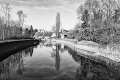 有大厦和树的池塘 图库摄影