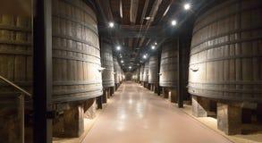 有大木桶的老酿酒厂 库存照片