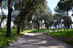有大树的城市公园在那不勒斯的中心 库存图片