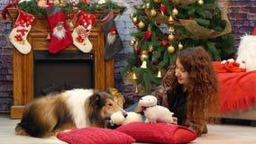 有大牧羊犬的女孩说谎在枕头的树 股票视频