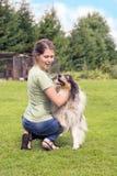 有大牧羊犬的少妇尾随使用在草 库存图片