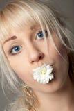 有大蓝眼睛的可爱的少妇和在她的嘴的一朵菊花 免版税库存照片