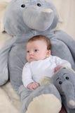 有大象的婴孩 库存图片