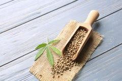 有大麻籽的瓢 免版税库存图片