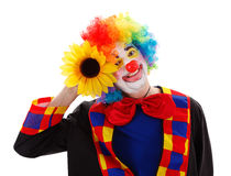 有大黄色花的小丑 免版税库存照片