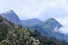 有天空的蓝山山脉与白色云彩和绿叶所有-自然绿色喀拉拉风景背景 库存照片